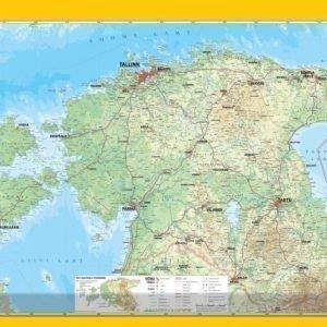 Regio Seinäkartta Regio Viro 99x70 Cm