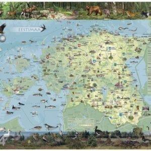 Rw Viron Kartta+Ripustuslistat 99x69 Cm