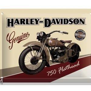Sg Retrotyylinen Metallijuliste Harley-Davidson 750 Flathead 20x15 Cm