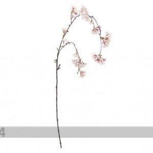 Shishi Tekokukka Kirsikan Taipuisa Oksa Roosa-Valkoinen 120 Cm