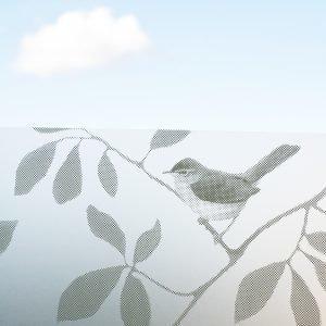 Siluett Frost Birds Ikkunakalvo 98x34 Cm