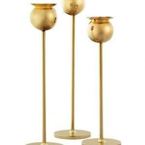 Skultuna 82 0 Tulip Candle Stick Set Of 3 Gold