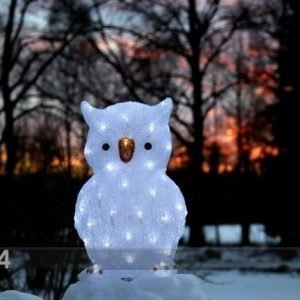 Star Trading Akryylihahmo Owl 43 Cm