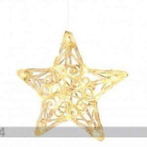Star Trading Joulukoriste TÄhti 25 Cm