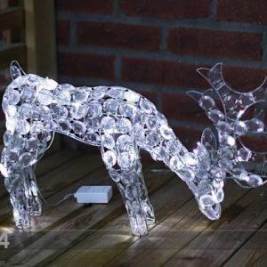 Star Trading Joulukoriste Ulkotiloihin Reindeer 34 Cm