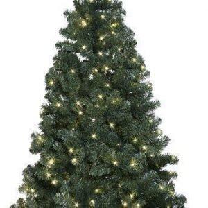 Star Trading Joulukuusi Ottawa LED