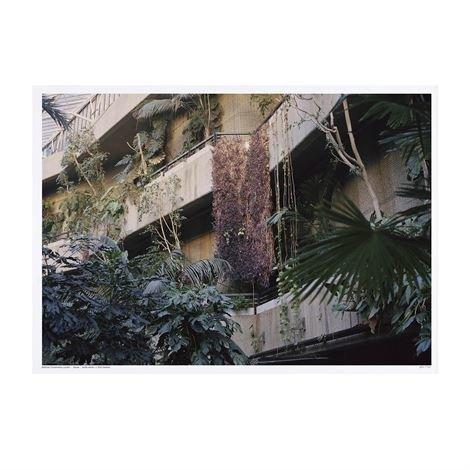 Studio Esinam Utopia Juliste 50x70 cm Barbican Conservatory