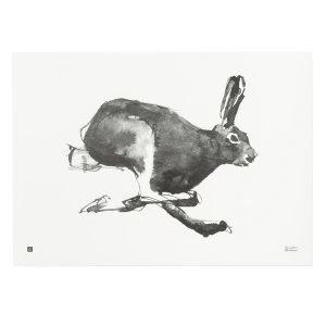 Teemu Järvi Illustrations Jänis Juliste 70x50 Cm
