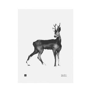 Teemu Järvi Illustrations Kauris Juliste 30x40 Cm