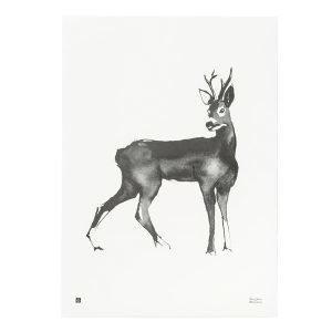 Teemu Järvi Illustrations Kauris Juliste 50x70 Cm