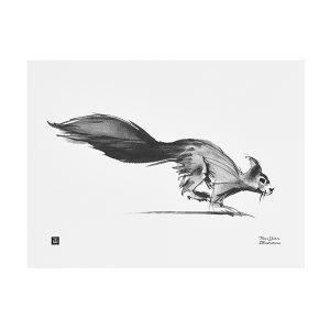 Teemu Järvi Illustrations Orava Juliste 30x40 Cm