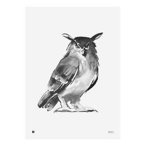Teemu Järvi Illustrations Pöllö Juliste 50x70 Cm