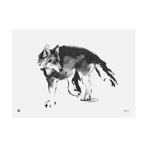 Teemu Järvi Illustrations Susi Juliste 50x70 Cm