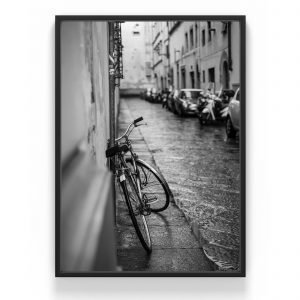 The Nordic Poster Bicykle Juliste Harmaa 30x40 Cm
