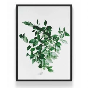 The Nordic Poster Citrus Leaf Juliste Vihreä 30x40 Cm