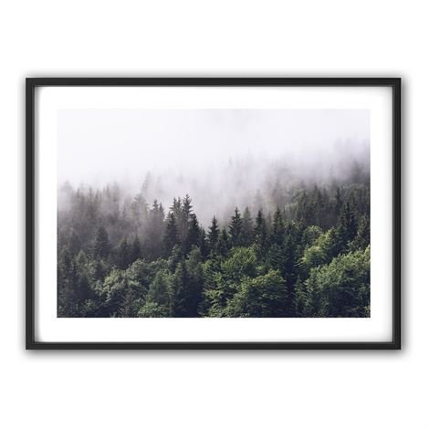 The Nordic Poster Forest Juliste 50x70 cm