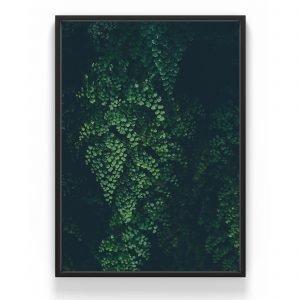 The Nordic Poster Leaf Wall Juliste Vihreä 50x70 Cm