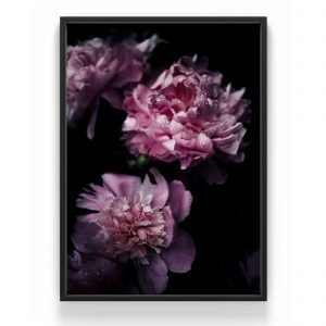 The Nordic Poster Peony Juliste Roosa 30x40 Cm