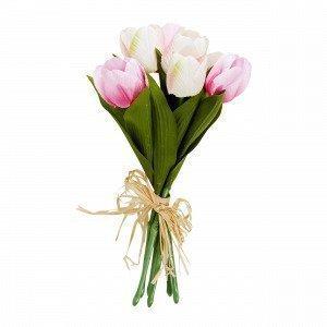 Tulips Tekokasvi Multi