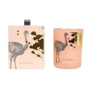 Victorian Bird Collection Tuoksukynttilä Pinkki