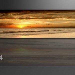 Visario Seinätaulu Auringonlasku 120x40 Cm