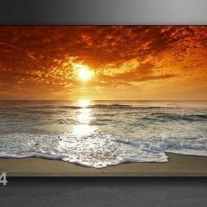 Visario Seinätaulu Auringonlasku 60x80 Cm