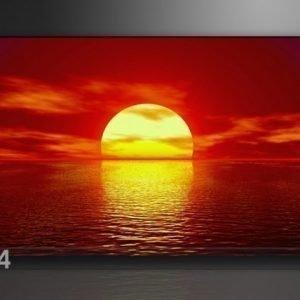 Visario Seinätaulu Aurinko 60x80 Cm