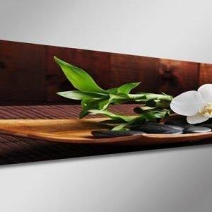 Visario Seinätaulu Orkidea 120x40 Cm