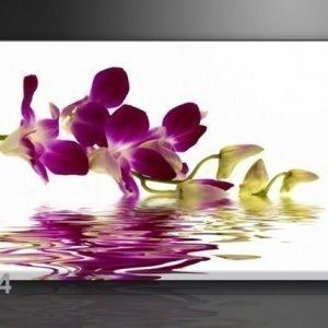 Visario Seinätaulu Punainen Orkidea 60x80 Cm