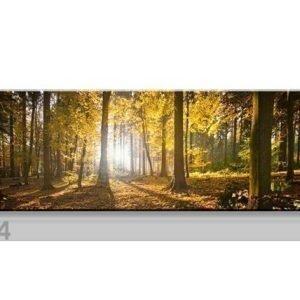 Visario Seinätaulu Wald 120x40 Cm