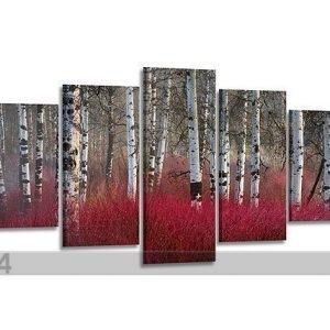 Visario Viisiosainen Seinätaulu Punainen MetsÄ